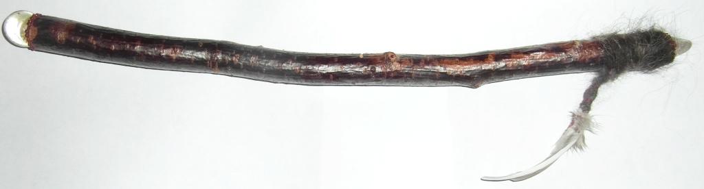 SAM_3756