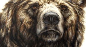 bearIIdetail1-672x372